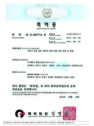 Patent No. 10-0977714